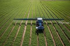 השקייה של שדה חקלאי