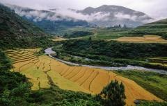שדות בבהוטן