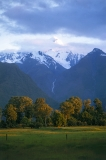 נוף ניו זינלנדי