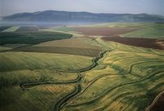 חקלאות בעמק יזרעאל